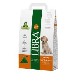 LIBRA Cão Puppy Borrego