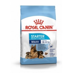 ROYAL CANIN MAXI STARTER